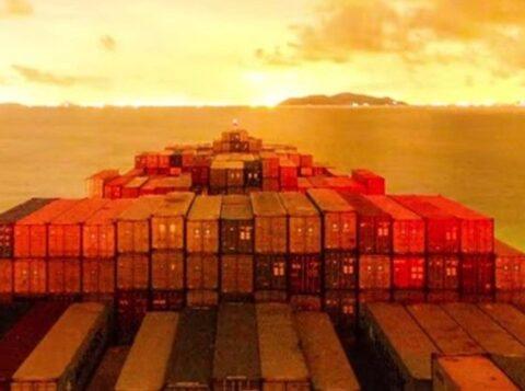 A participação do agronegócio nas exportações totais do Brasil passou de 40,2% para 46,3% no último ano